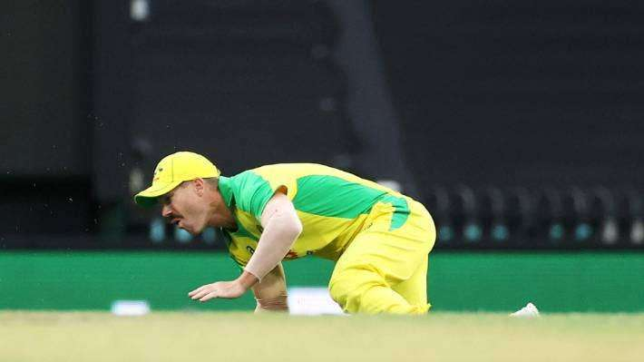 india-vs-australia-david-warner-ruled-out-for-odis-and-t20s-due-to-groin-injury-_g2d